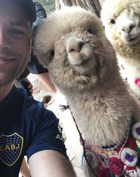 Tim with Alpaca