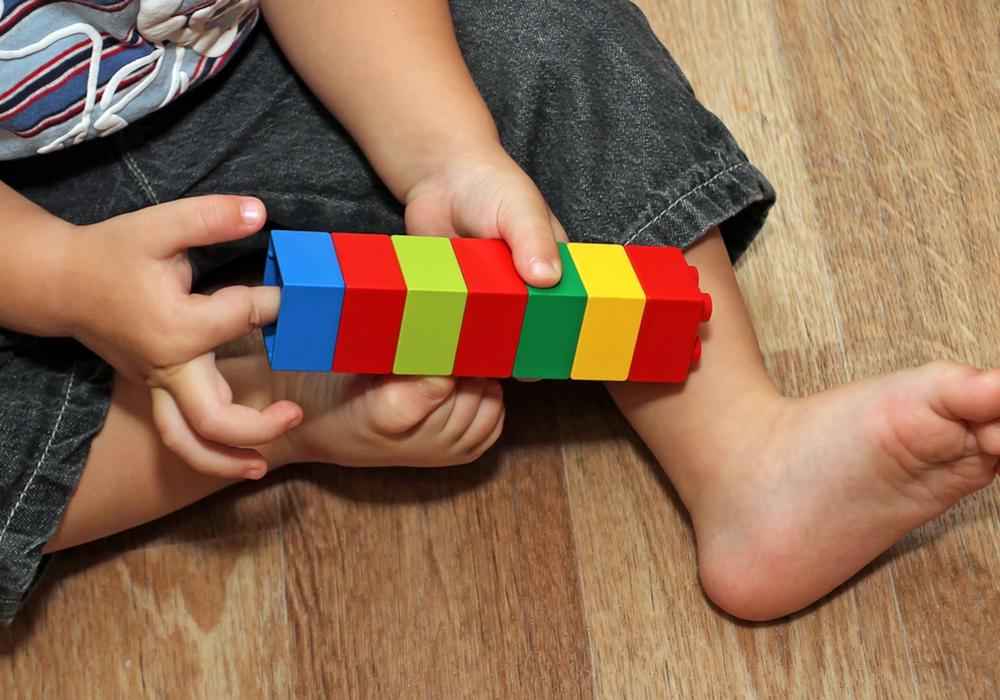 Building Cognition